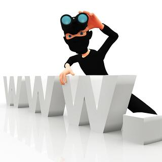 3D online thief with the letters www ? isolated.jpeg
